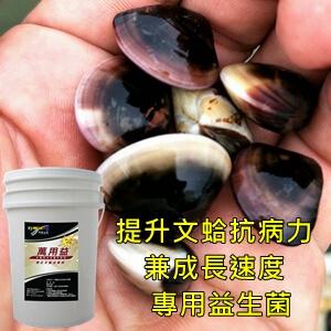 symlong-文蛤-萬用益PLUS