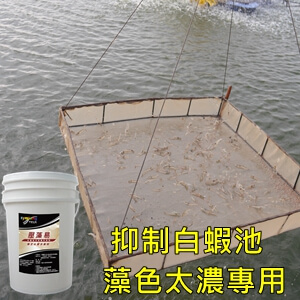 symlong-白蝦-壓藻易