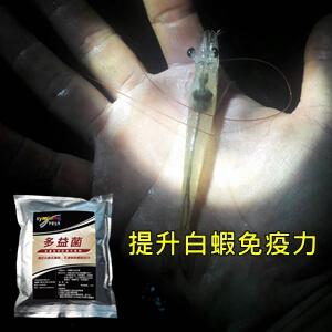 symlong-白蝦-多益菌