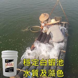 symlong-白蝦-萬用益